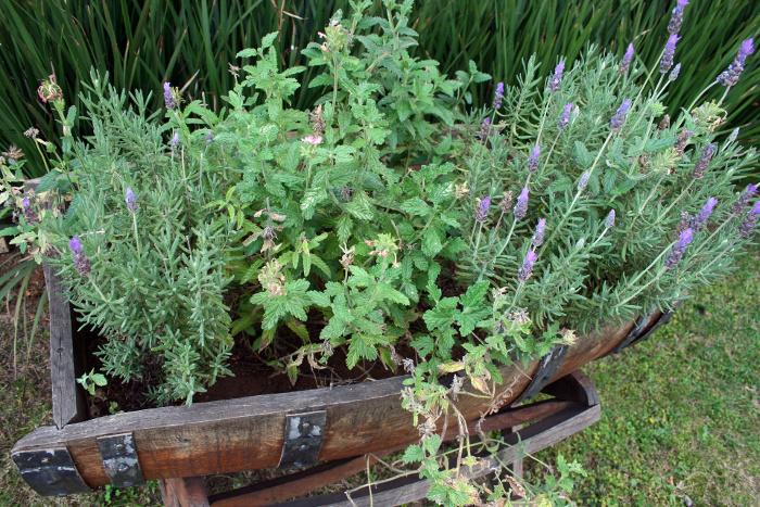 herb-barrell