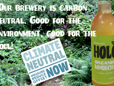 climate-neutral-now-holo-240117